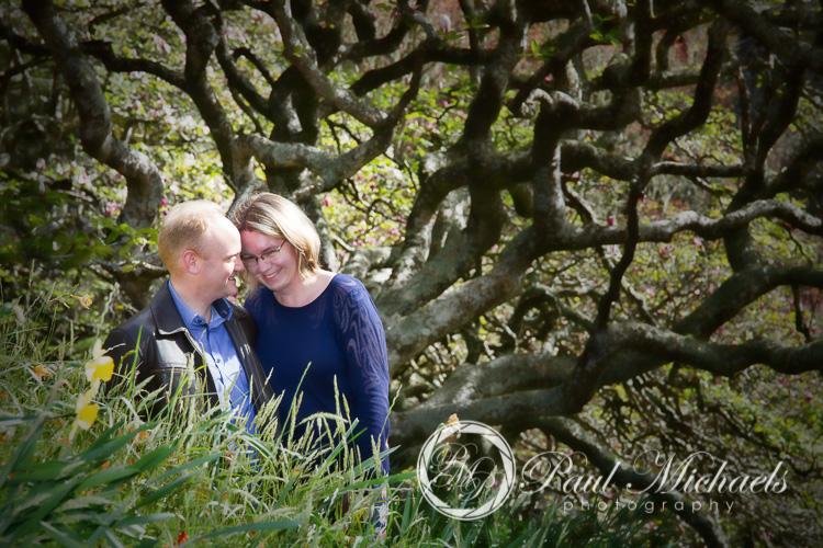 Spring photos in Wellington gardens.